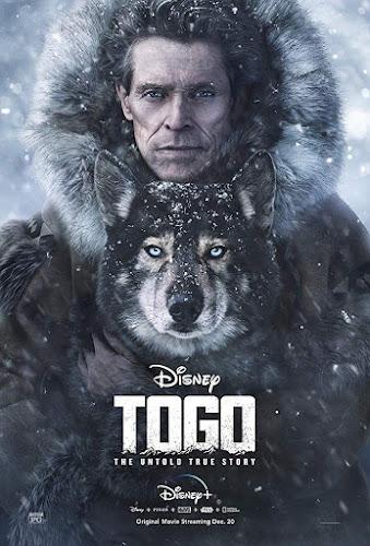 Togo (2019) | DVDRip Latino HD GoogleDrive 1 Link