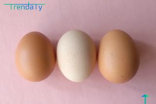 10 حقائق يجب أن تعرفها عن البيض