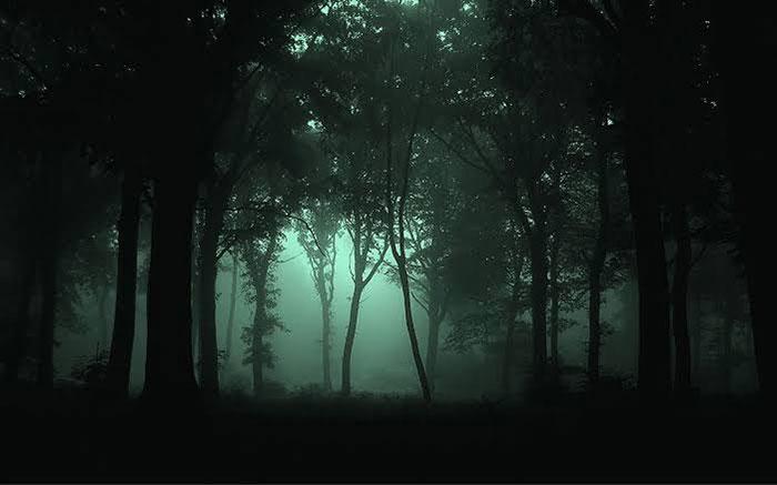 Tersesat Berhari-Hari di Malam Hari