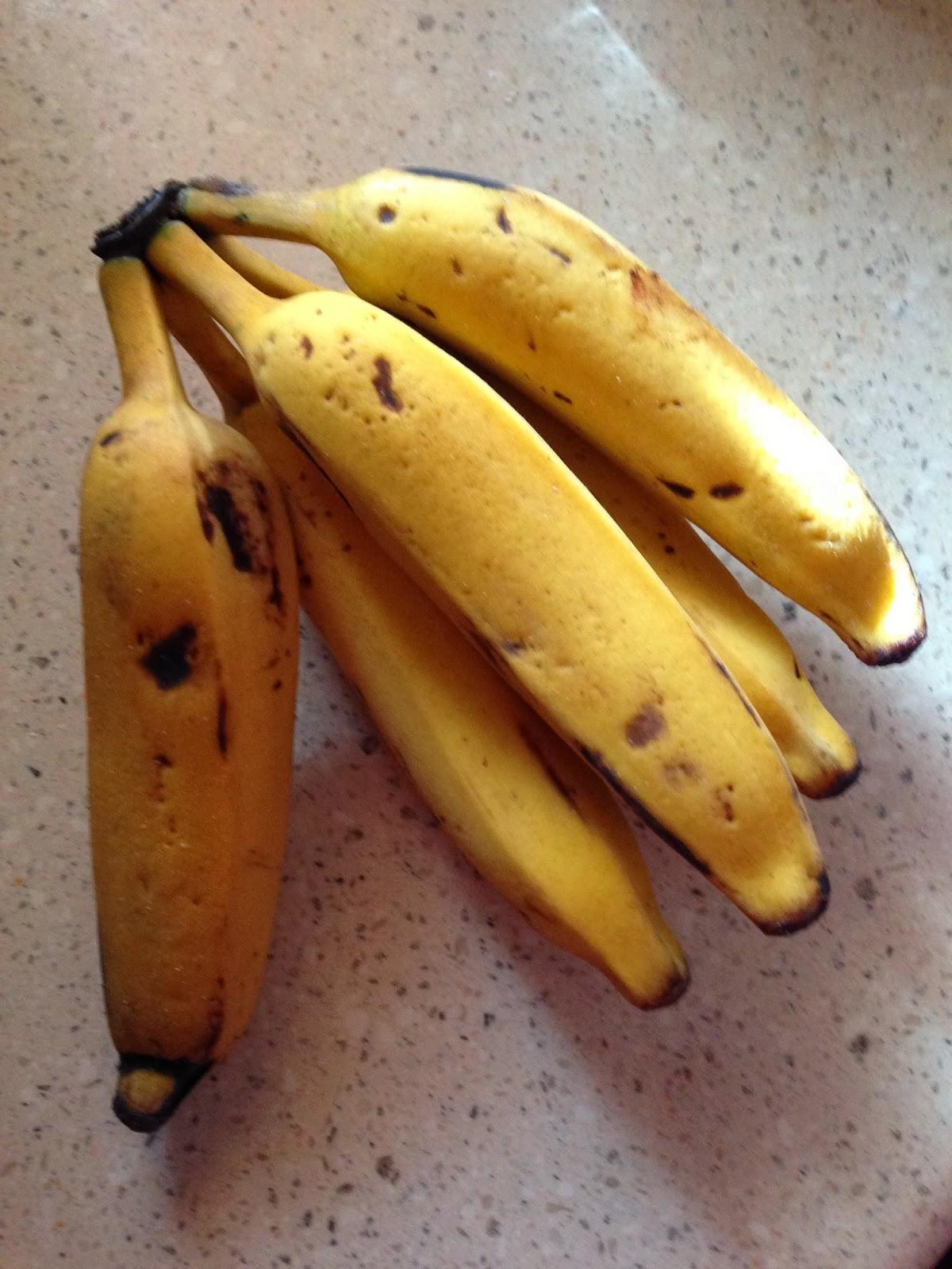 Coconut Tapioca and Apple Banana Pudding