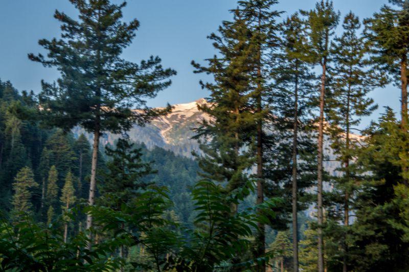 Sun Kissed Snow clad peaks at Reshwari Bungus