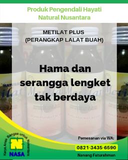 natural metilat