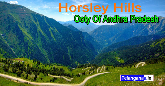 Horsley Hills Andhra Pradesh of Ooty