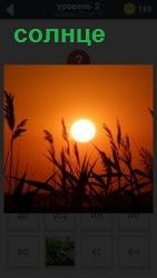 солнце на закате, полный его диск ярко светится