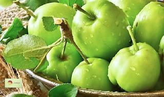 تعرف على الفوائد الصحية للتفاح الأخضر