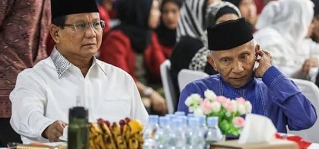 Amien Rais: Setelah Pertemuan Prabowo-Jokowi Tak Ada Cebong-Kampret, Tinggal 'Cebong Bersayap'
