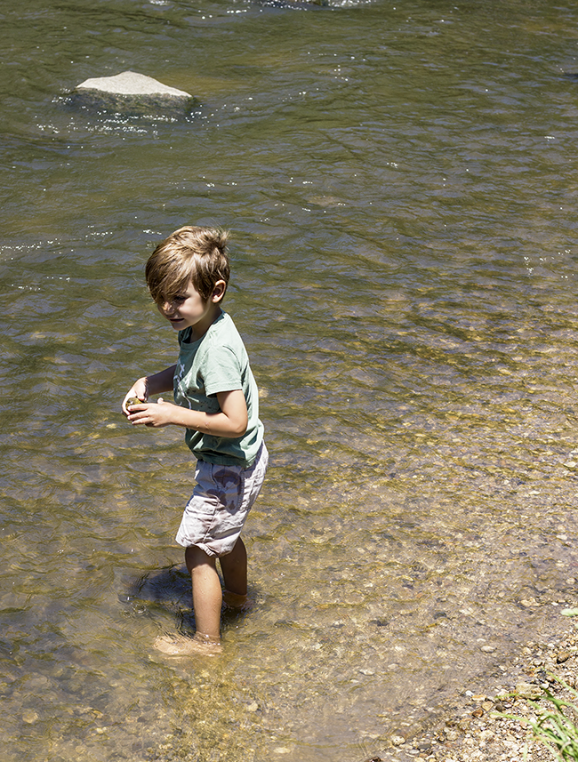 8 Ways to Help Conserve Natural Resources