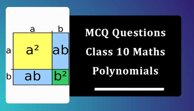 MCQ Questions for Class 10 Maths Chapter 2 Polynomials with Answers