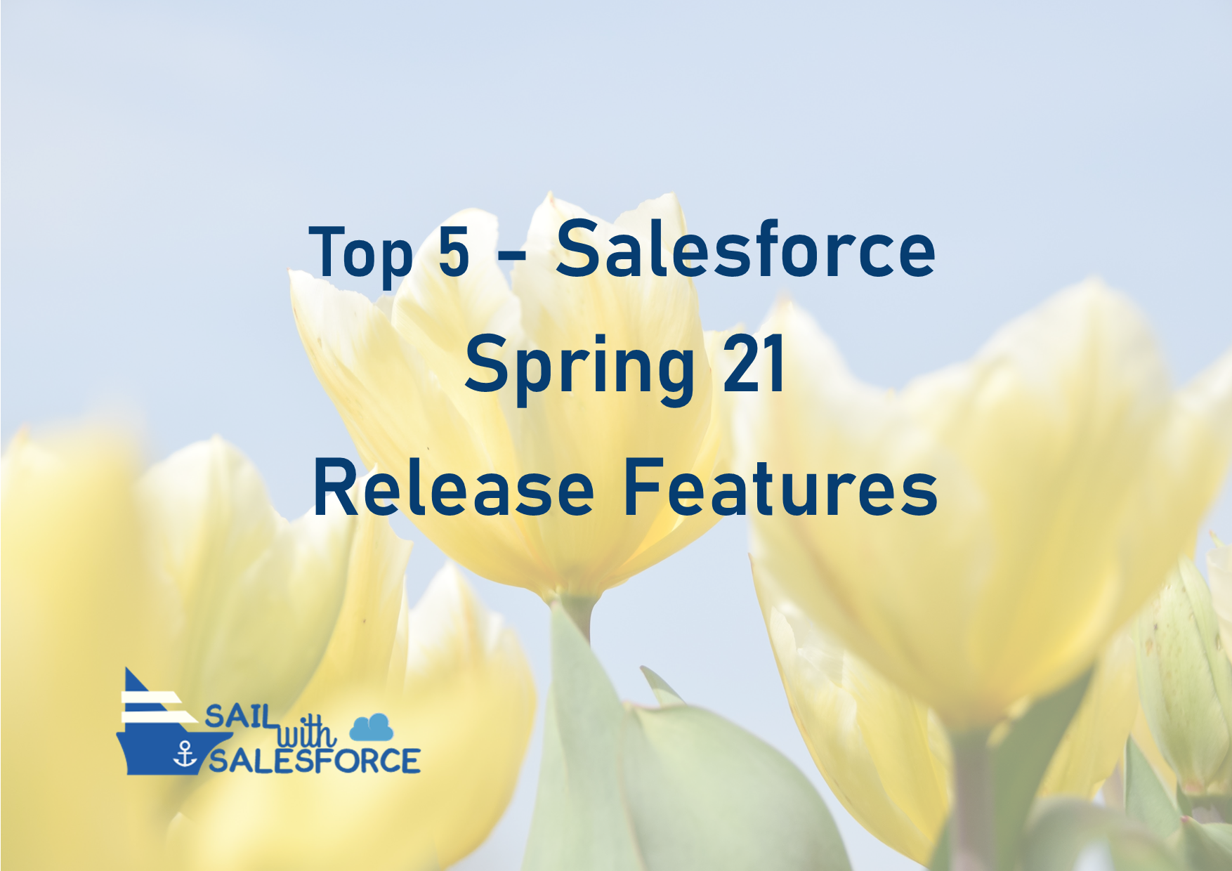 Top 5 Salesforce Spring Release