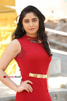 Telugu Actress Zahida Sam Latest Pos in Red Gown at RF Films New Movie Opening  0005.JPG