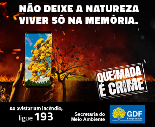 CAMPANHA PREVENÇÃO DE INCÊNDIOS FLORESTAIS - BLOG DO PAULO MELO