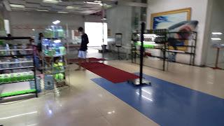 Mengintip Event Pasar Ikan Cupang di Depok Town Square - Kaum Rebahan ID