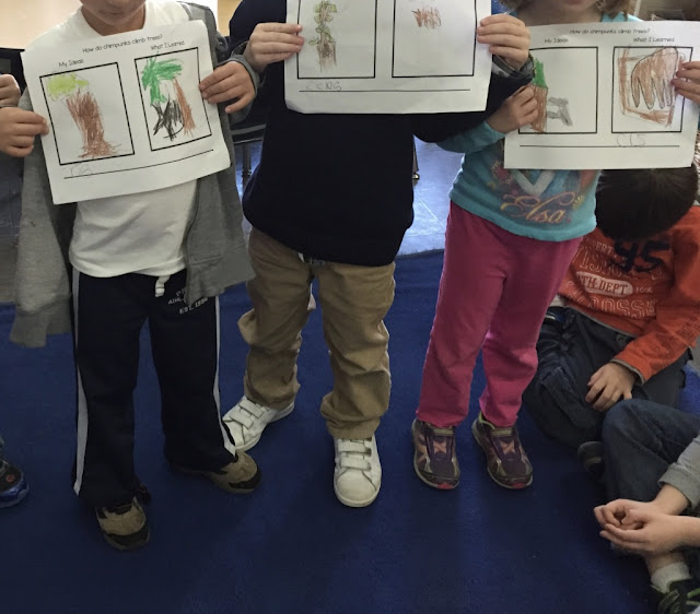 kindergarten children sharing what they learned about chipmunks