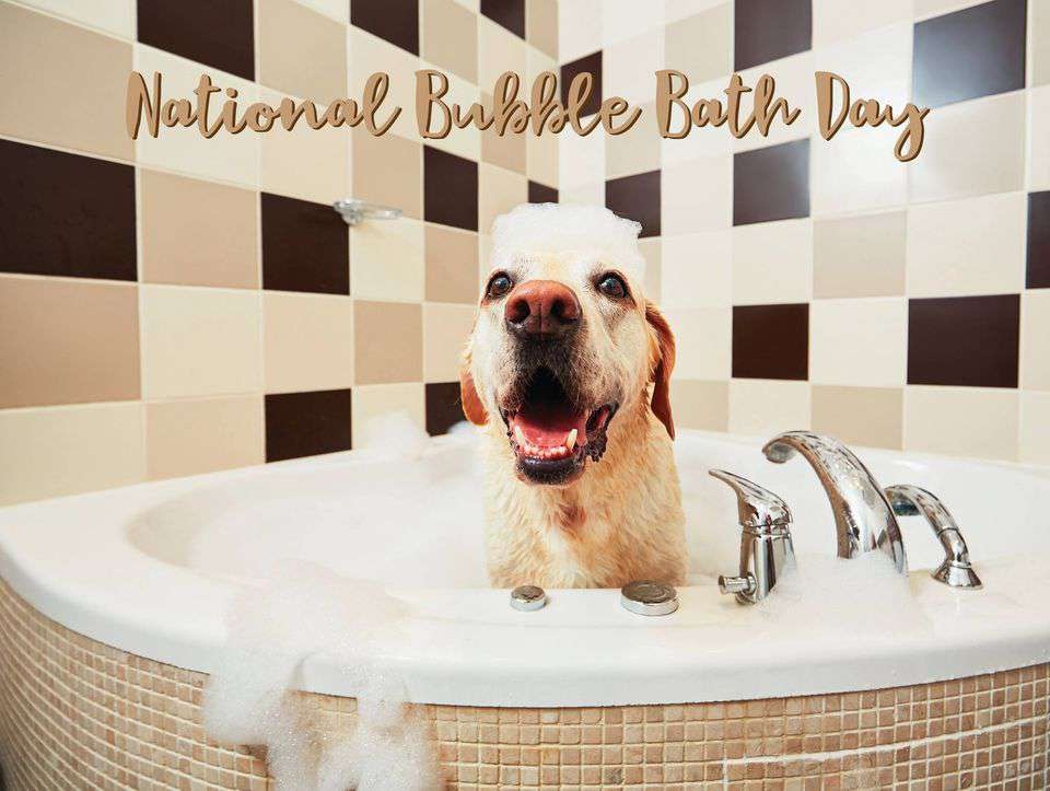 National Bubble Bath Day Wishes Awesome Picture