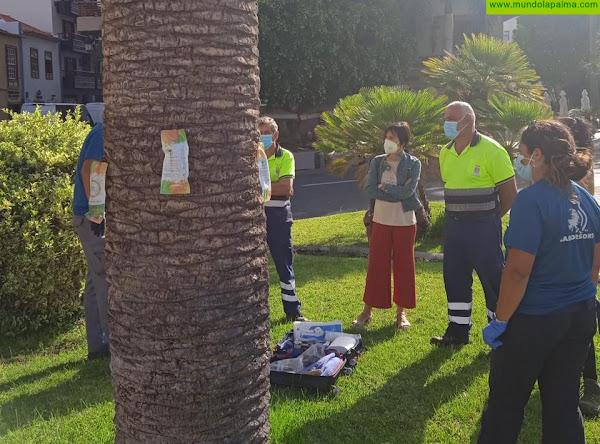 El Ayuntamiento capitalino pone a prueba un nuevo servicio de control de plagas en árboles más eficiente y respetuoso con el entorno