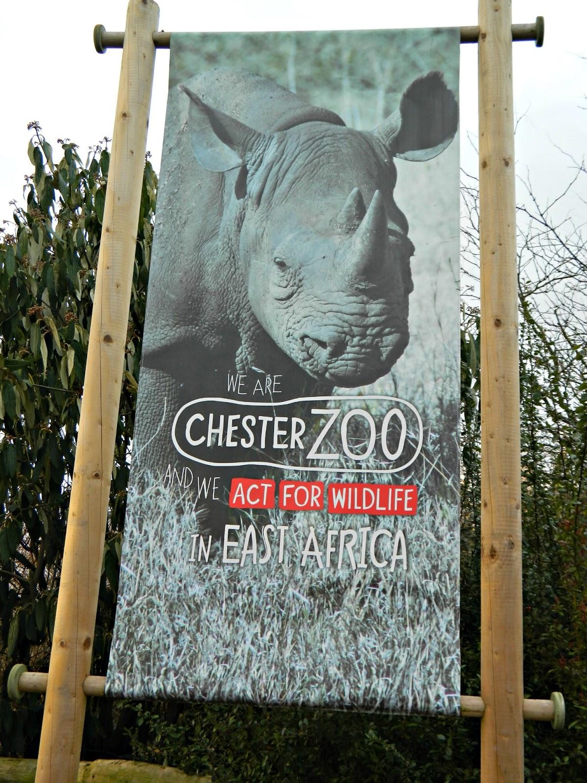 Chester Zoo Rhino Banner