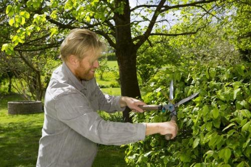 Gardena beste heggenschaar hand test
