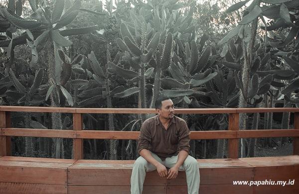 Hutan Kota Kaombona Palu  yang Instagramable