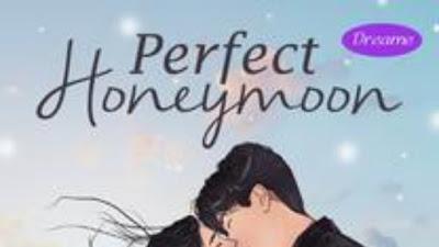 Novel perfect honeymoon