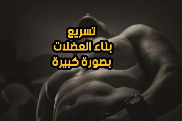 زيادة الوزن وبناء العضلات