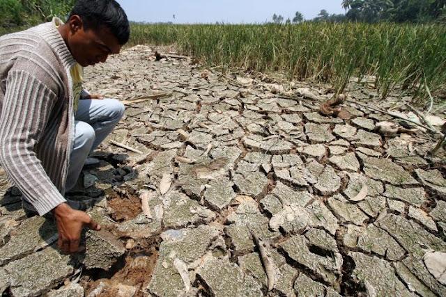 Indonesia Kini Dihadapkan Anomali Perubahan Iklim