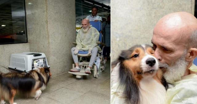 Momen Mengharukan ketika Pasien Kanker Dijenguk oleh Anjing Peliharaannya, Dokter Terkejut setelah Tahu Ini