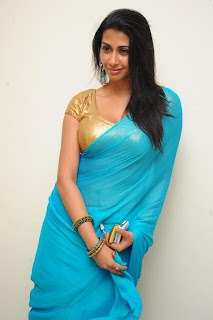 Telugu Actress Gayathri Iyer Saree Stills