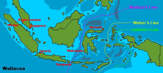 Gambar  Pembagian Flora dan Fauna Indonesia