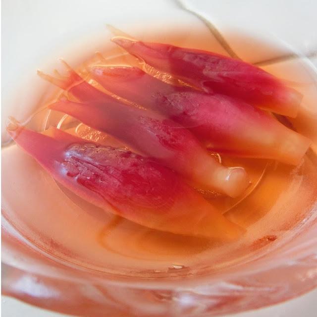 みょうがの甘酢漬けは7日間も保存可能な作り置きメニューにおすすめ!