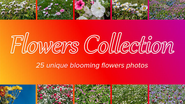 Flowers Photo Collection Available on Adobe Exchange