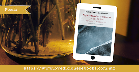 RESEÑA Algo roto, algo quemado y algo negro ** El poemario abre los caminos para encontrarse con el lector que es participe de la observación del mundo | Josué Osorio Estrada