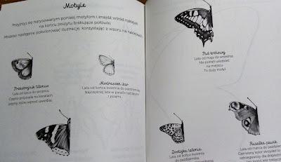Biblioteczka Montessori - ćwiczenia, Wydawnictwo Egmont - recenzja Biblioteczka Montessori - ćwiczenia, Wydawnictwo Egmont