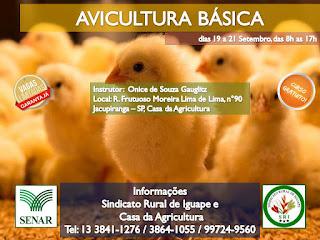 Curso de Avicultura Básica está com inscrições abertas