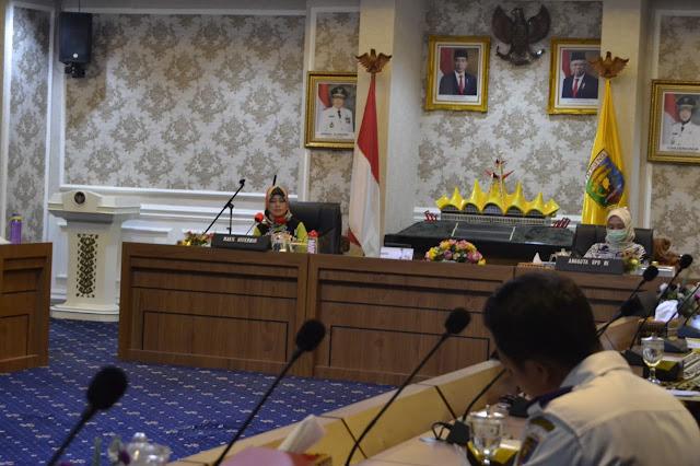 Chusnunia Sampaikan Langkah Antisipasi Pencegahan Virus Corona di Rapat Bersama DPD RI