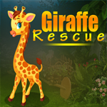 Games4King Giraffe Rescue
