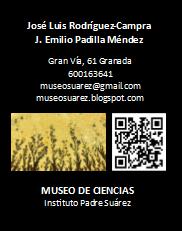 Tarjetas de visita Museo Suárez