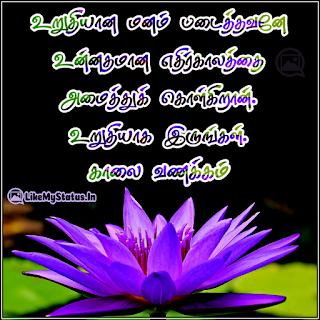 Good morning tamil