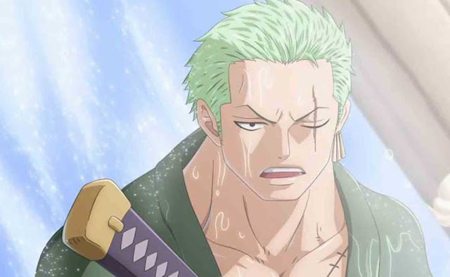 What caused the scar on Zoro's left eye?