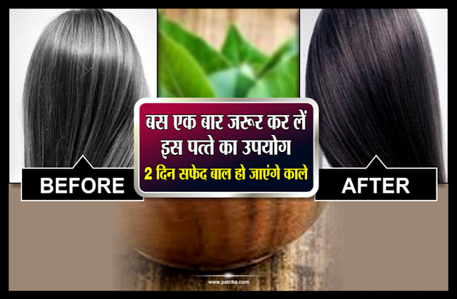 इस उपाये से आपके बाल हो जायेंगे घने और काले एक बार इस्तेमाल जरूर करें