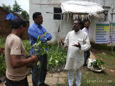BSS President Basudevji our tree planting NGO explaining the arithmetic to marginal farmers in Bhamori Kalan