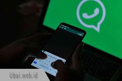 robot whatsapp