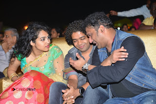 Nenu Local Audio Launch Stills  0236.JPG