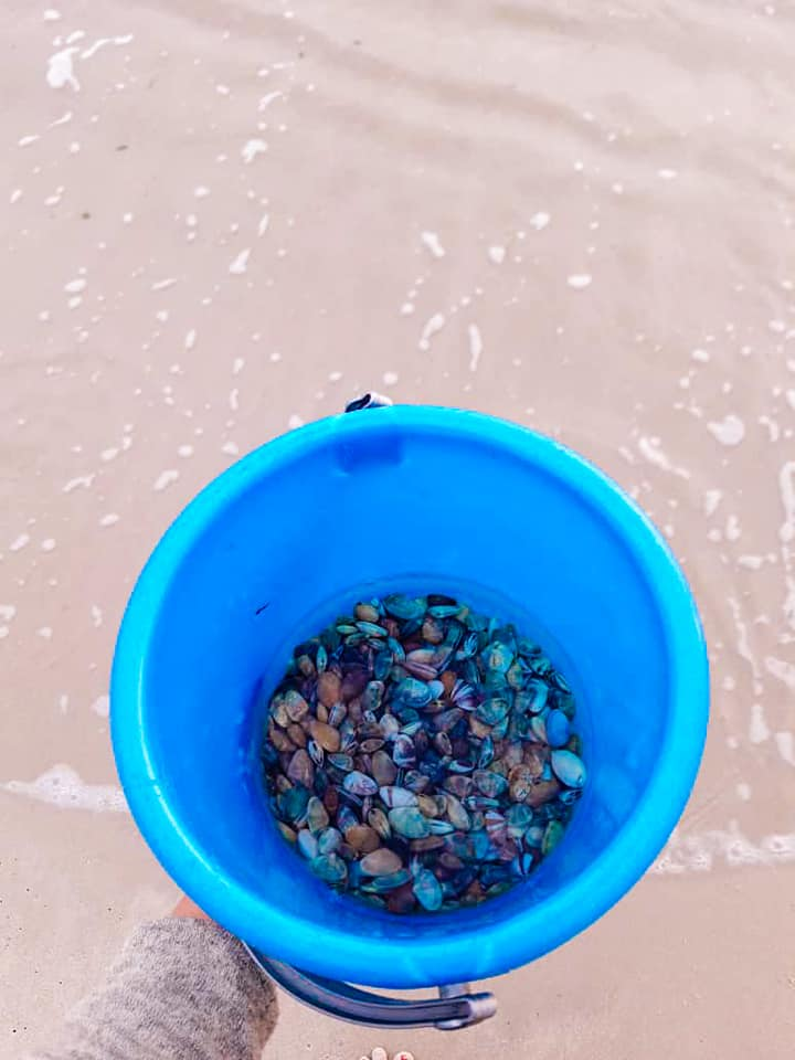 Mencari Remis di Pantai Port Dickson