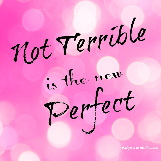 Not Terrible is the New Perfect - The Story Behind our new phrase.  Calypso in the Country Blog