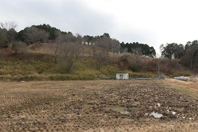 三河亀山城