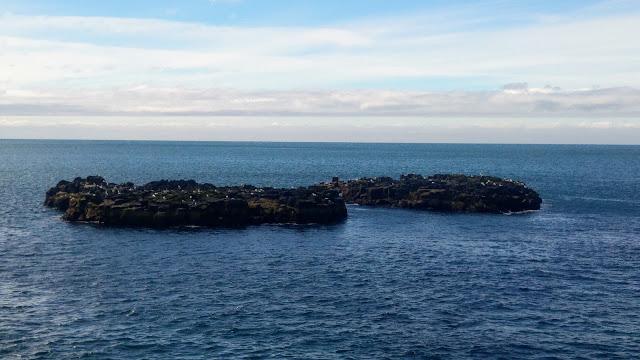 איונים בים