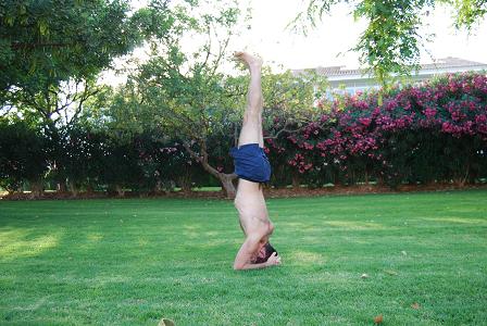El desarrollo de la práctica de Yoga