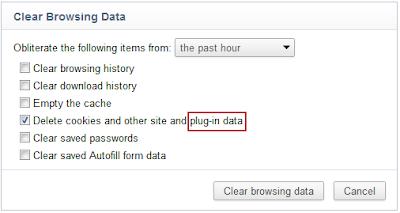 Flash Daten löschen
