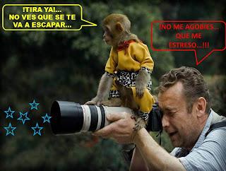 http://misqueridoscuadernos.blogspot.com.es/2012/08/el-arte-de-la-fotografia.html