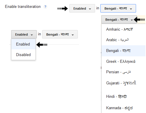 enable transliteration feature